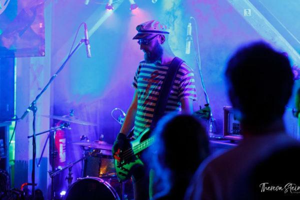 musikfestival-an-der-ostsee-fette-ente-im-krokoteich-auf-der-insel-ruegen